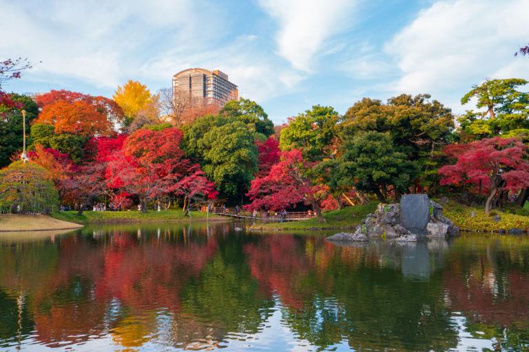 Koishikawa korakuen garden