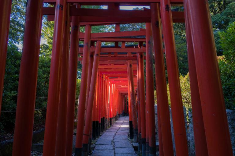 Nezu-shrine-Tokyo